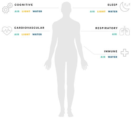 A Wellness Ecosystem